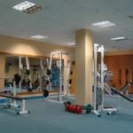 Бесплатный бизнес-план фитнес клуба