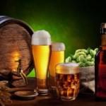 Бизнес на продаже пива